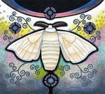 Domestic Silk Moth as Animal Teacher