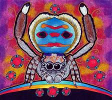 Coastal Peacock Spider as Animal Teacher