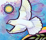White Dove as Animal Teacher