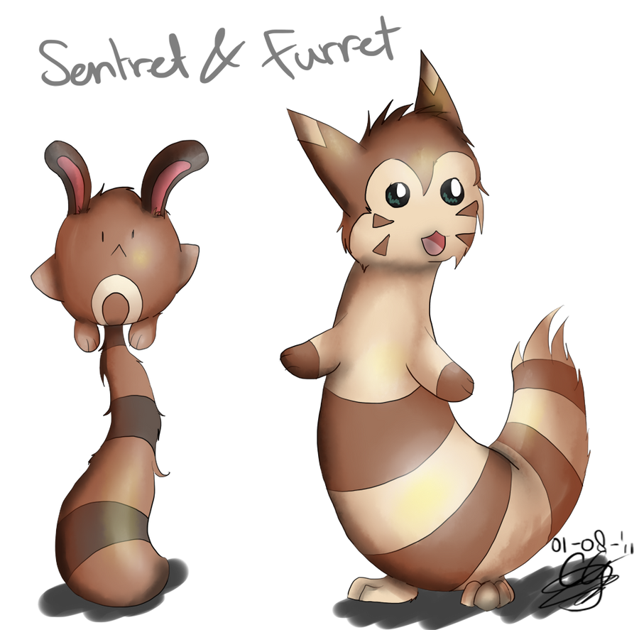 How to Evolve Sentret picture