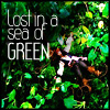 Lost in a Sea of Green by loudluna