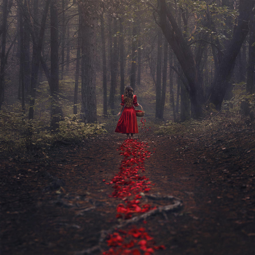 The Trail of Red by parvanaphotography