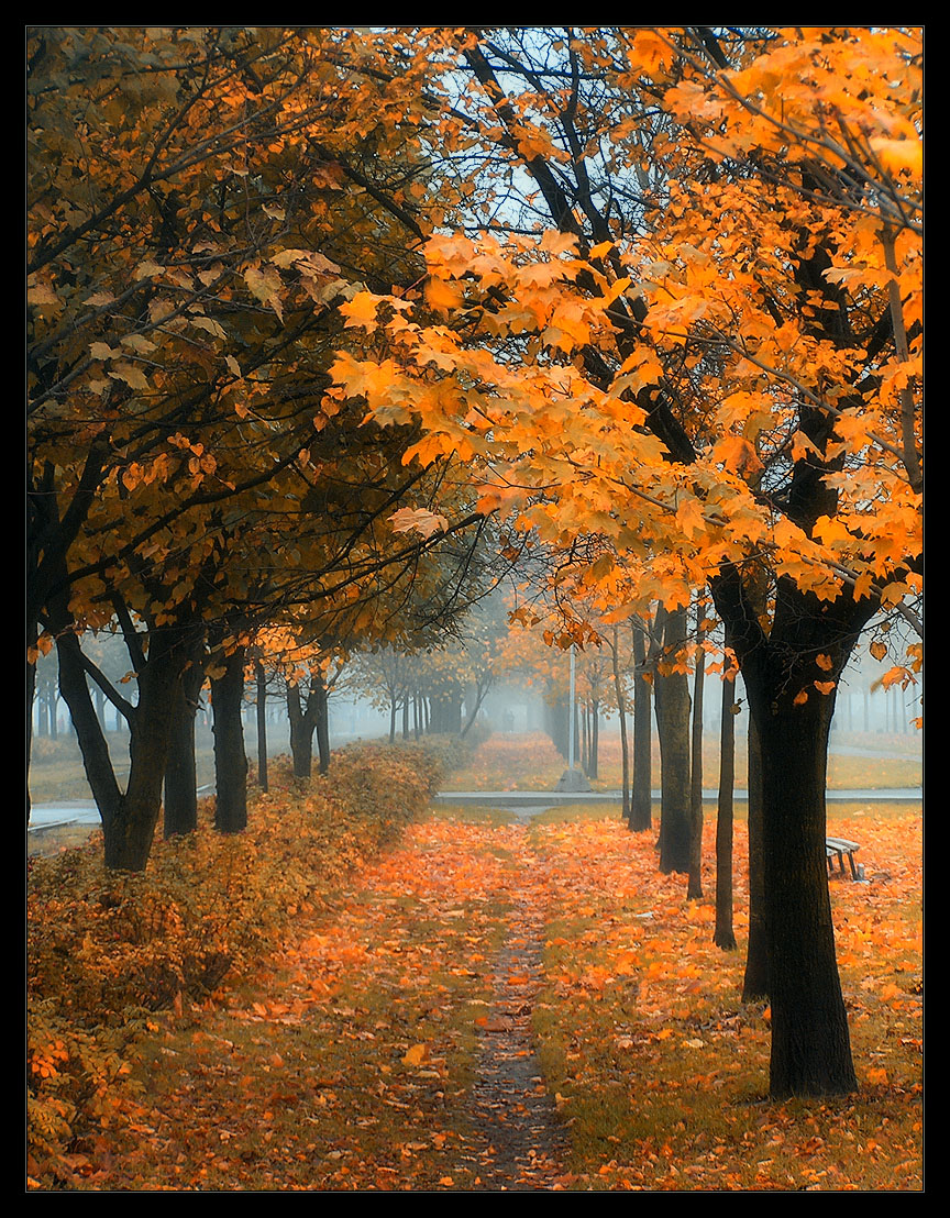 Beautiful Fall Pictures Autumn Colors