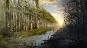 The Forbidden Forest.