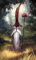 mushroom magician