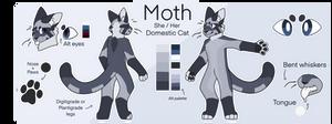 Moth Ref 2021