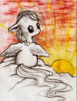 Sunrise Pony