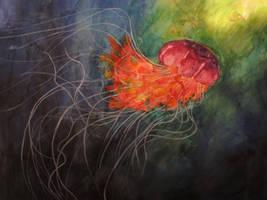Jellyfish III by lenischoen