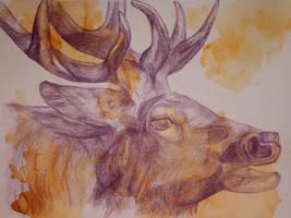 An elk-triptychon I by lenischoen
