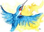 River Kingfisher II