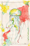 Jellyfish on graph paper