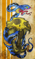 MATA LEAO 'THE LION KILLER'
