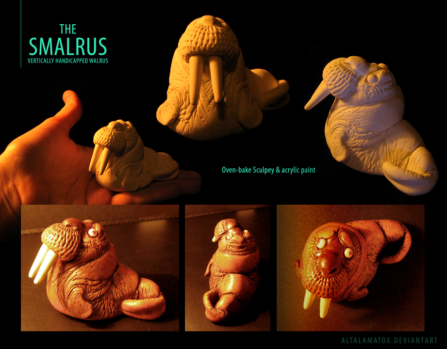 Small Walrus by Altalamatox