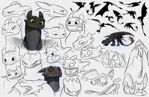 Toothless Studies by PookaDoodle
