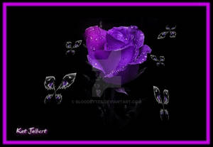ALL EYES ON THE PURPLE ROSE