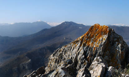 Alps up-close