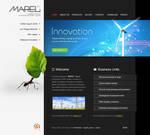 Marel Web Design