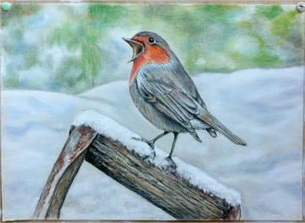 Robin in snow (last step before end... 2017) by Reybert