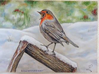 Robin in snow Final 25 x 35 (03-2017) by Reybert