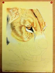 Thirsty Lioness Step 2 WIP by Reybert