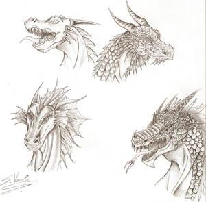 Cabezas de Dragon 1