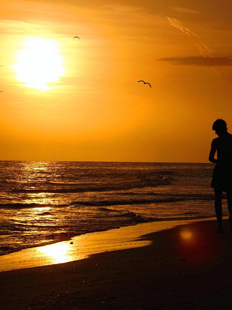 Florida Summer Silhouette by LittleDollFace