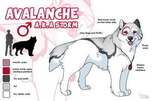 Avalanche Reference by DaimonKitty