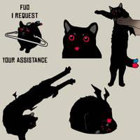Cat meme An