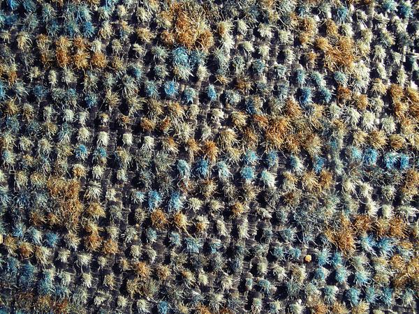 old carpet by snikkio-stock