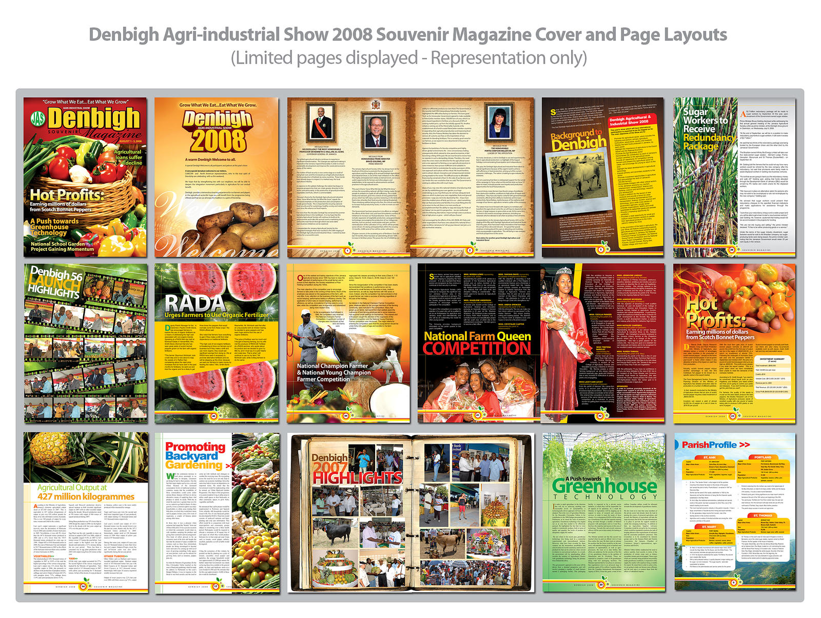 Denbigh Magazine Page Layouts by innografiks on DeviantArt