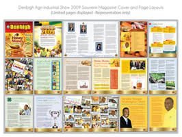 Denbigh Magazine 2009 Layout by innografiks