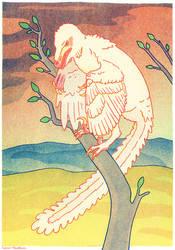 Albino velociraptor