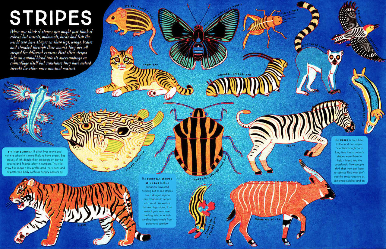 Animals spread
