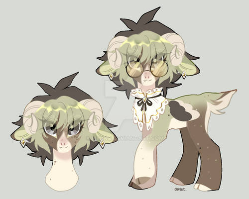 [owlet] adopt auction closed