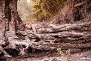 Overgrown - Earthlings by CorneliaGillmann
