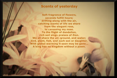 SCENTS OF YESTERDAY