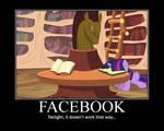 Facebook and Ponies