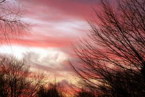 Sunset colors by shutterlight