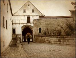 Walking in the Past by shutterlight