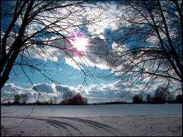 Cold Blue by shutterlight
