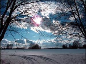Cold Blue