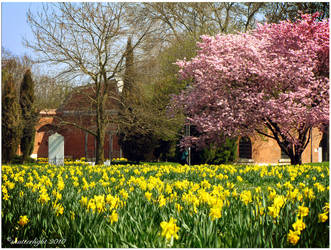 Spring Time by shutterlight