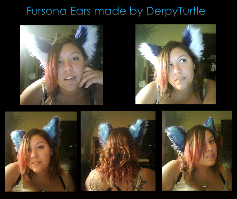 Fursona Ears by AnarchyWolfKira