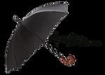 PNG (39) BLACK UMBRELLA
