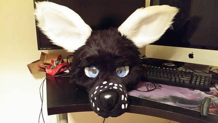 Front view (ears up / Happy)