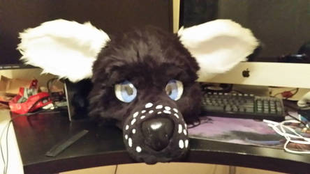 front view (Ears down/normal)