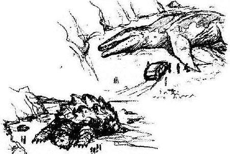 Kamoebas and Mosasaur by Godzilla2013 on DeviantArt