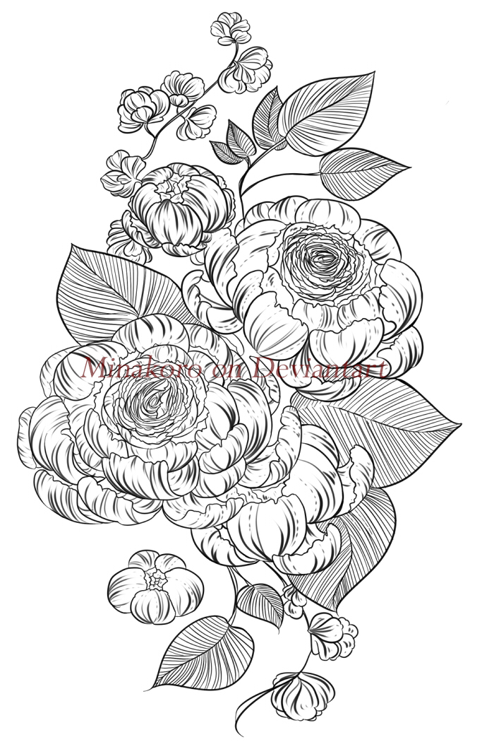 Peony Line Drawing Tattoo : Peony tattoo sketch by minakoro on deviantart