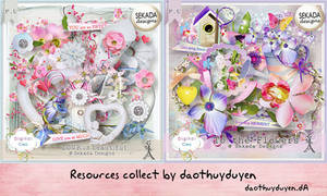 Share Res #5 by daothuyduyen