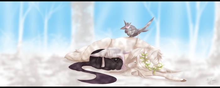 .D-008: Daydreams!.